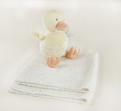 Baby_duck2_small