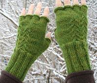 Fern Fingerless Gloves PDF