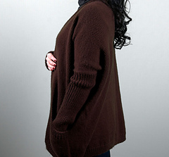 Cardigans_northernharrierruana2_small