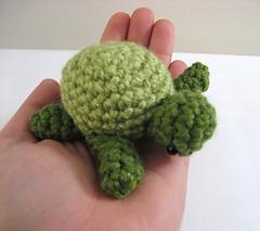 Sea_turtle_3_small