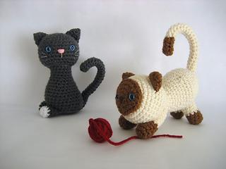 Kitten4_small2