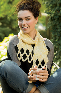 Sign-of-four-scarf_small2