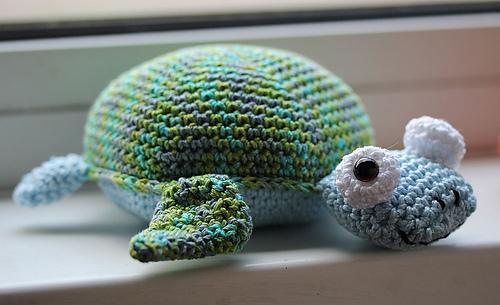 Turtle_medium