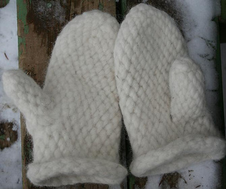 Slip-mitt-001-c__small2