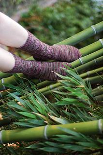 Rambutan_bamboo_walk_2_small2
