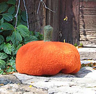Connecticut-pumpkin-for-rav_small2