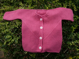 Toddlersurprisejacket_small2