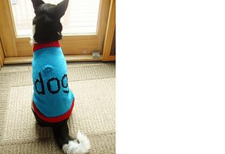 Luna_dog_sweater_11-10__3__small2