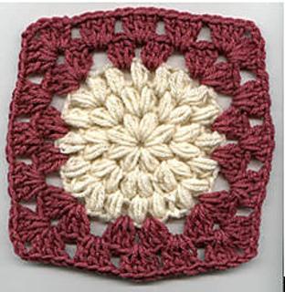 Camellia_square_small2