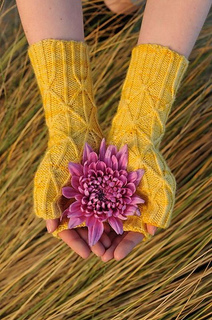 Greyfriars_mitts_small2