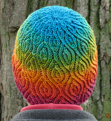 Almond_hat_in_parakeet_3_small