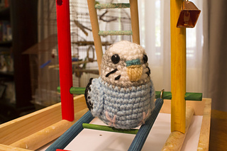 Blue_baby_budgie_1280x853_small2