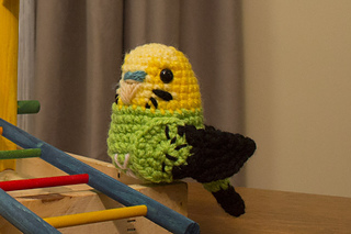 Green_baby_budgie__1280x853_small2