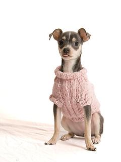 Pi-chi-sweater_6973-web_small2