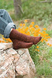 Copper_penny_socks_nancy_bush_small2