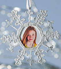 M01227_snowflake_300_small