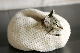 Cat_oven_7_small2