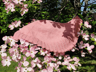 Pinkshawl_small2