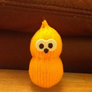 Zingy_small2