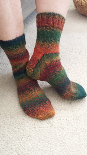 Loops___threads_socks_redwoods_3_7_2015_medium