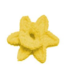 Daffodil_image_small