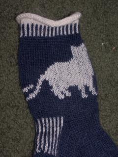 Cat_sock_1_small2