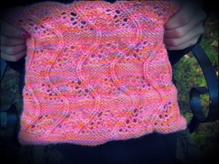 Taylorcowl6_small2