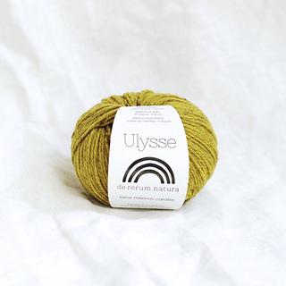 Ulysse_small2