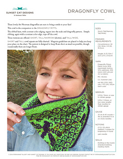 Front_page_dragonfly_cowl_small2