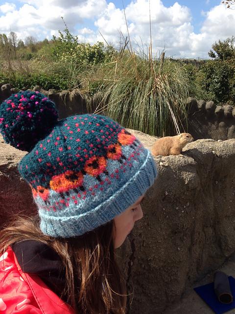 Donna Smith Designs: A few Baa-ble hats