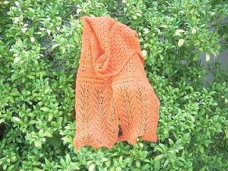 Carrot_scarf_small2