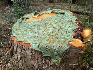 Butterflyforest11_small2