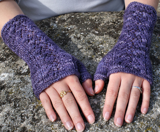 Fame_mitts_1_small2