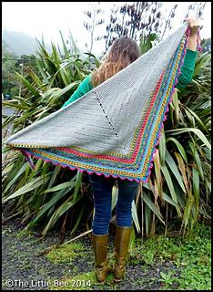 Bright_shawl_open_back_cr_border_small2