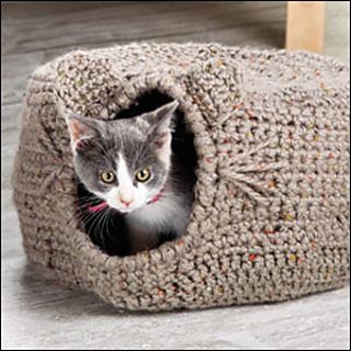 M22158_cat_300_small2