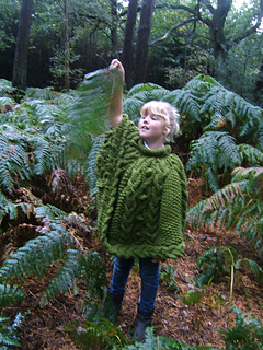 Forest_poncho_small2