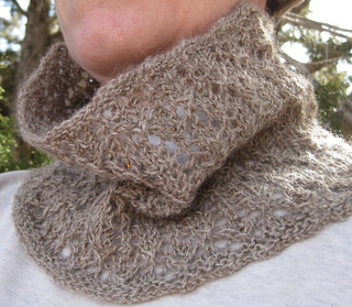 Cowl_cropped_small2