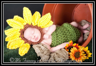 608_sunflower_and_body_suit_small2
