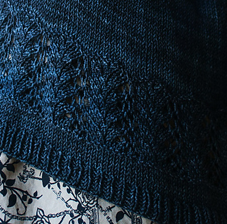 Lace_crop_small2