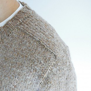 Top_down_seamless_saddle_shoulder_3_small2