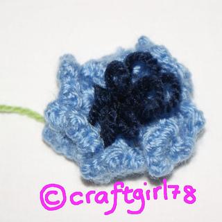20120901-cornflower_small2