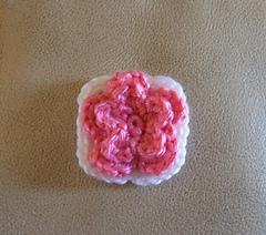 Squareflower_small