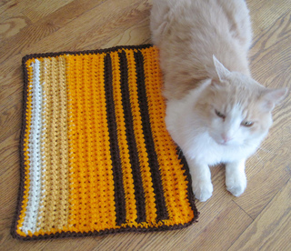 Andrew_with_cushy_pet_pad_gold_2_small2