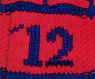 Special_olympics_scarf_date_small2