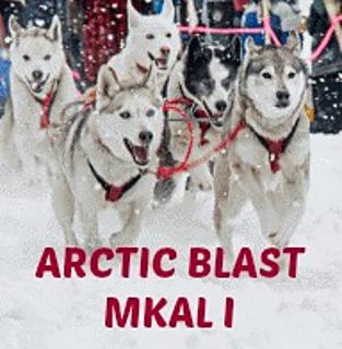Arctic_blast_mkal_i_small2