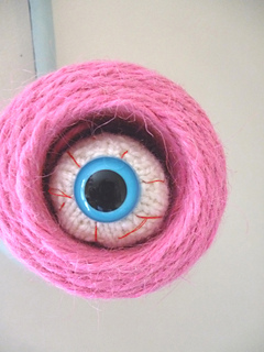 Eye1_small2