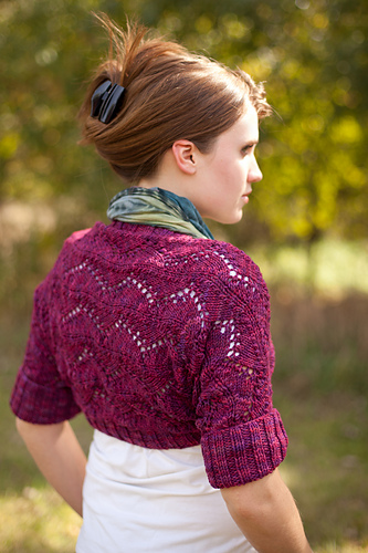 Dream in Color Shrug PDF
