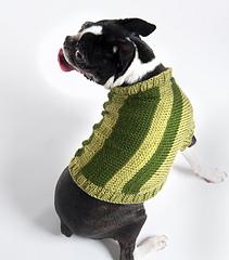 Dog_20sweater_201_sm_small