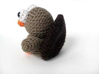 Tinyturkeyback_small2