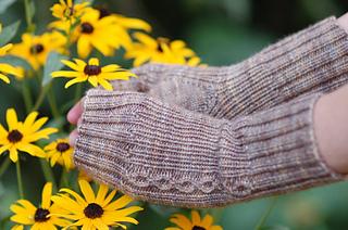 Sunflower2_small2